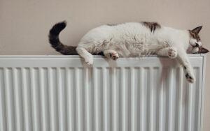 Mantenimiento de radiadores
